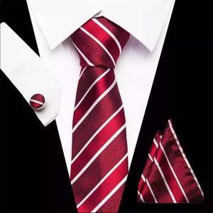 ❤️ Men's Tie Set 10370
